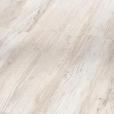 1590993_Pinie skandinávská bílá