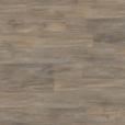 dlc00078 Balearic Wild Oak